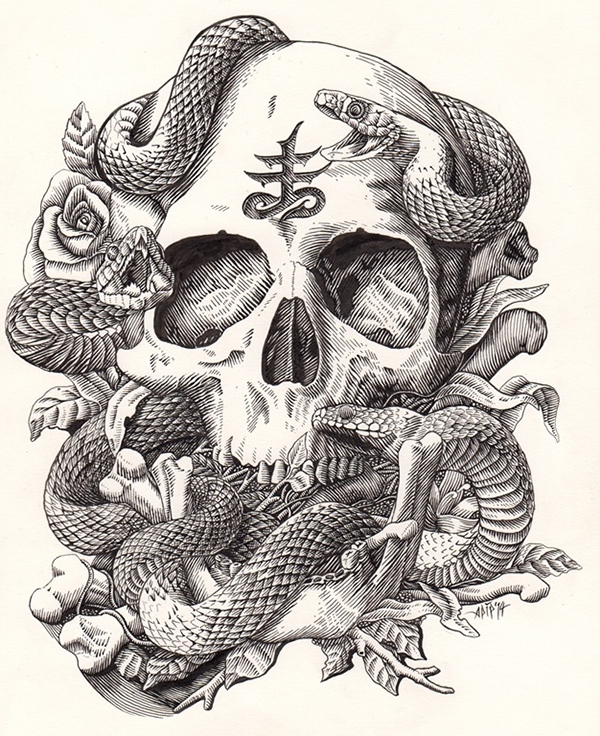 Skull and snake on behance voltagebd Image collections
