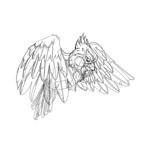 "cardinal bird birds red vector ""pen tool"" Illustrator art graphic ""Graphic Design"" cartoon feathers illustrating"