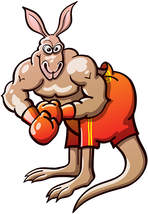 Strong kangaroo ready for a boxing match