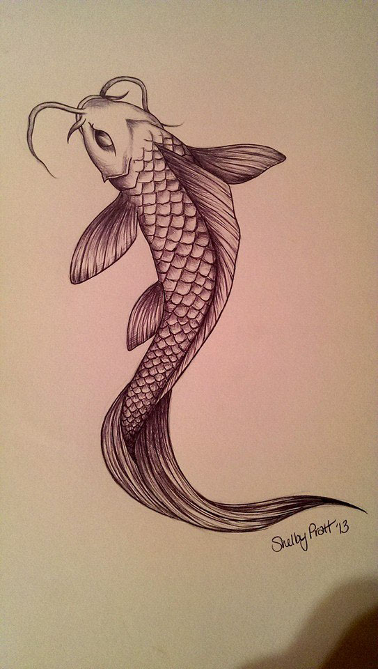 Koi fish drawing on behance for Coy fish drawing