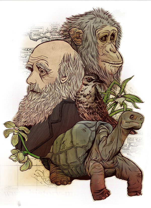 Image result for darwin galapagos