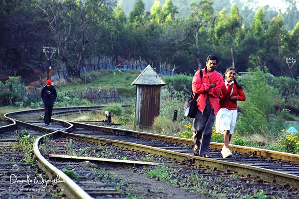 Sri lanka,Duminda,Dumidesign,rail hike,nanu oya,pattipola
