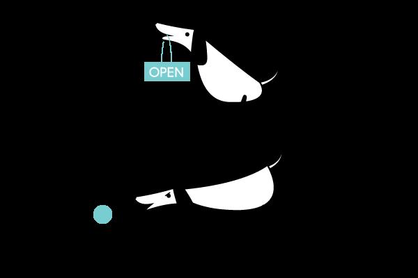 character development Pet Character graphic brand identity