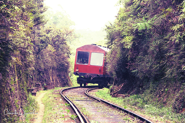 Duminda Dumidesign rail hike nanu oya pattipola