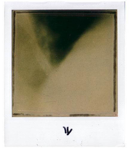 POLAROID polaroid 600 instant film