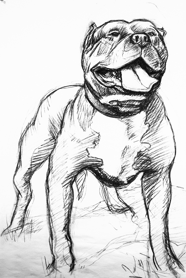 Big Drawings Of Big Dogs On Behance