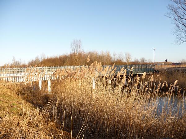 bruggen almere-poort