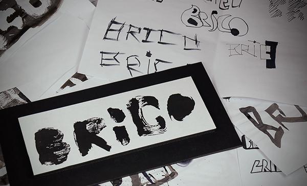 logo brico noir black developpement