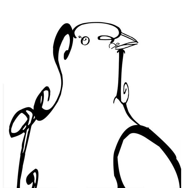 pigeon bright  love typographic portrait