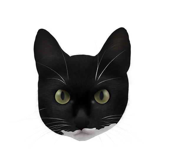 Retratos Pets   Ilustrações Digitais
