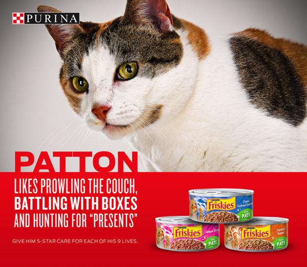 Purina ALPO pets pet food Retail shopper marketing dog food marketing   value green beans carrots potatoes nutrition taste