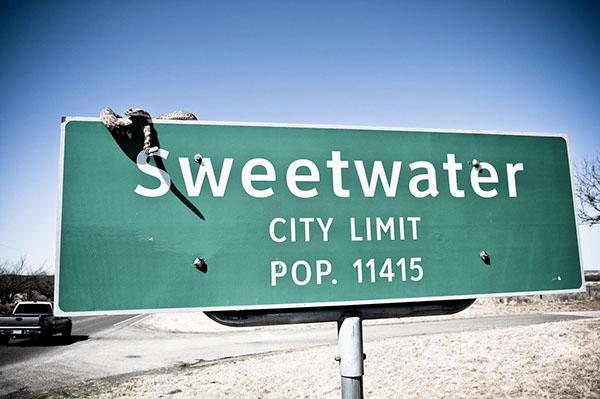 Rattlesnake Roundup Sweetwater tx Sweetwater Rattlesnake Roundup