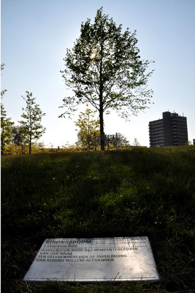 tekstplates pavement stainless steel Informtionbords Zagara plaquette durable Sustainable dutch