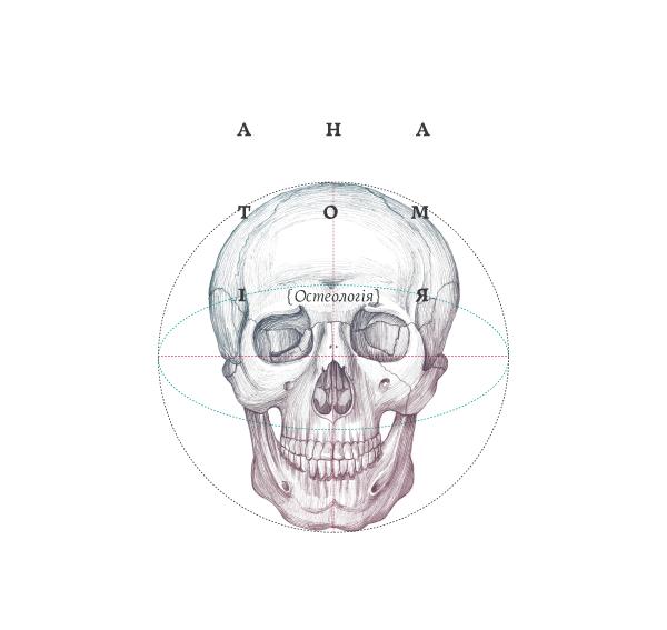 book anatomy skull bones osteology motion skeleton Rare