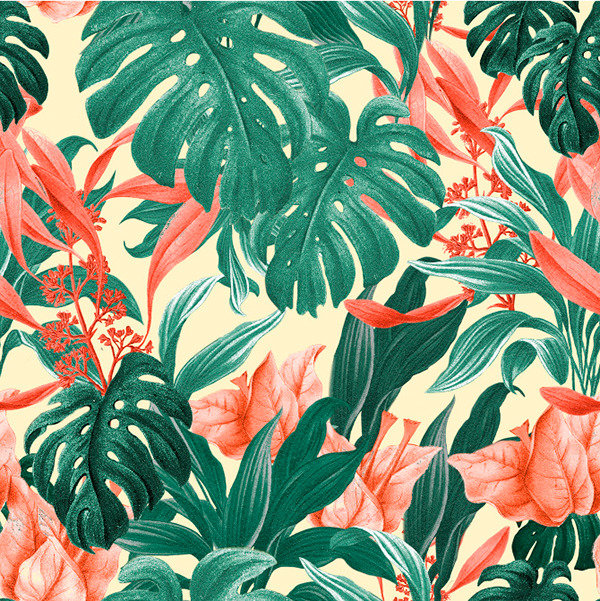 Aninimal Book: Tropical Pattern - Feat. Monstera Leafs on Behance