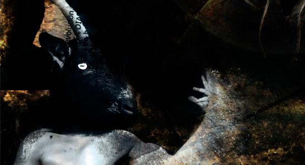 Aspic Lobo cabra Club de la lucha cuento infantil
