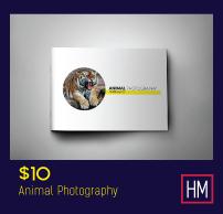 Multipurpose Corporate Brochure - 9