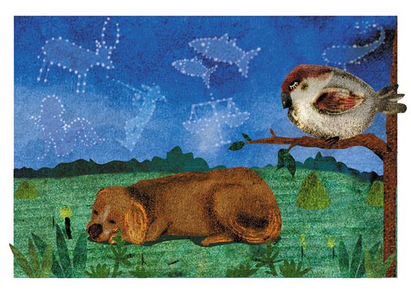 animals poem Poetry