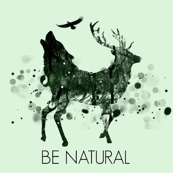 Deer Graphic Design   www.pixshark.com - Images Galleries