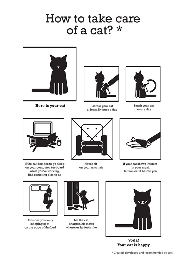 how to take care of a cat on behance