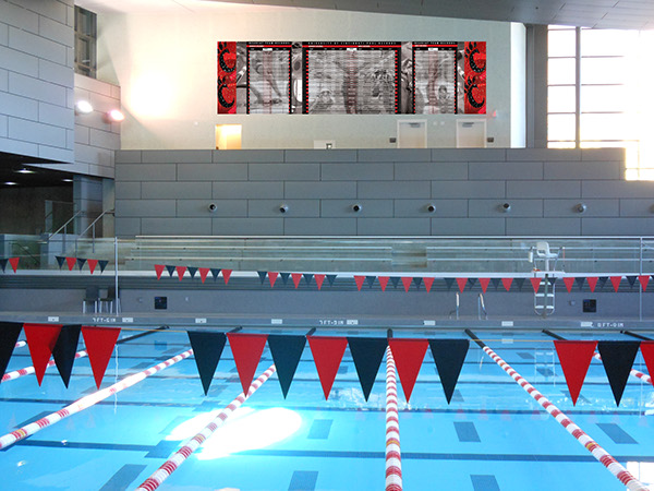 University Of Cincinnati Swim Team Record Boards On Behance