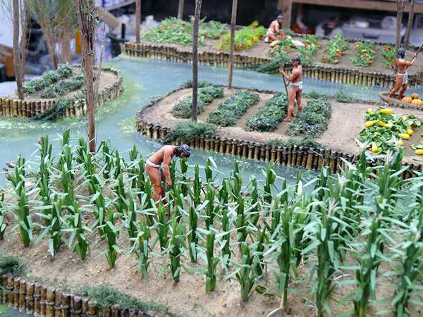 Crops For Aztec Chinampas Model On Behance