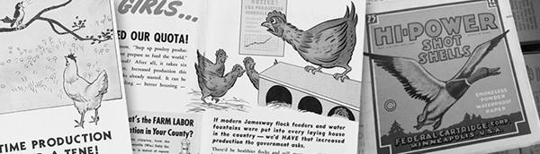 pdd touch duck chicken