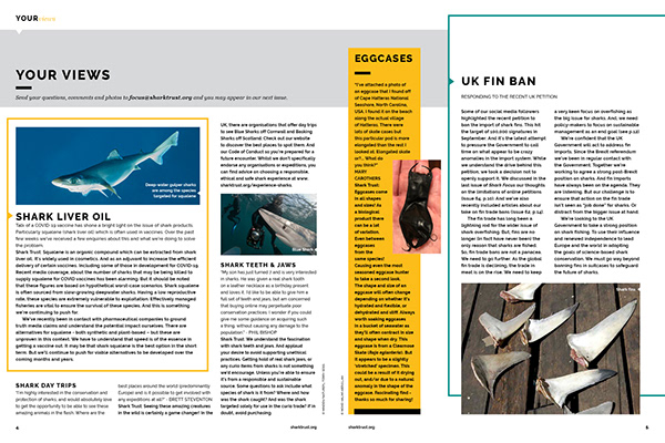 Magazine Design. The Shark Trust