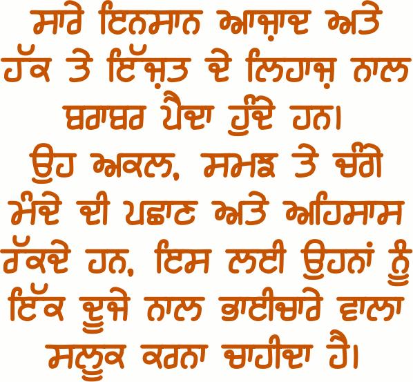 Comment In Punjabi Text