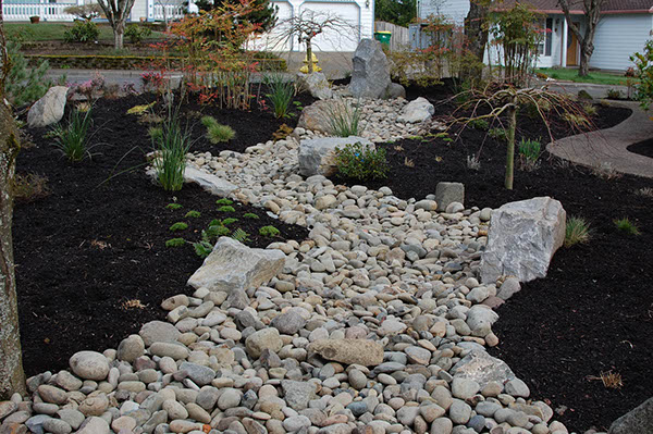 Beaverton oregon front yard by ross nw watergardens on for Dry landscape design
