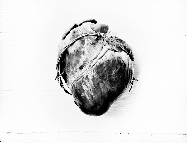 sacred heart inri heart religion flesh jesus cross red blood sacred Christianity