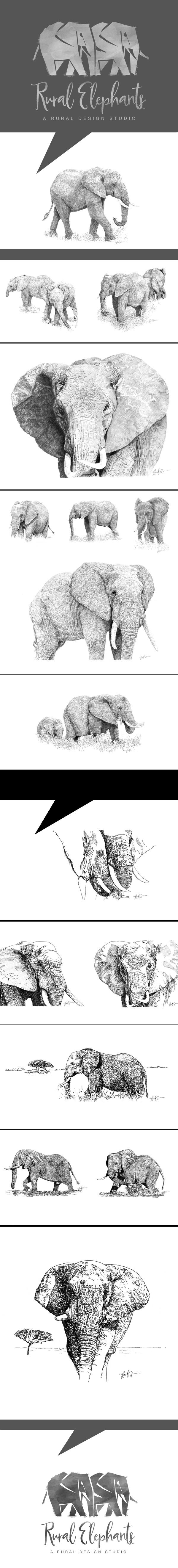elephants drawings Pen & Ink
