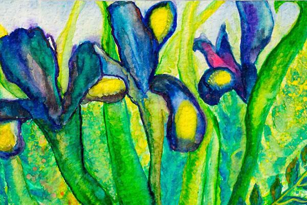 flower poppy iris spring summer decoration home decor oil on canvas aquarelle optimistic Nature green garden gift postcard