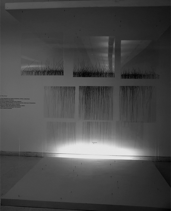 installation Exhibition  maczul maracaibo venezuela