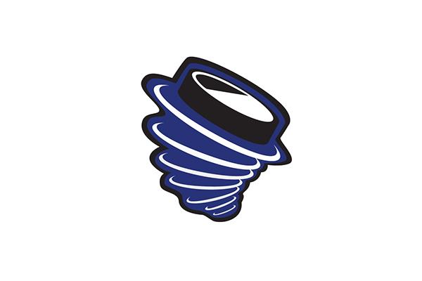 logo  sports hockey fargo force force hockey team sports