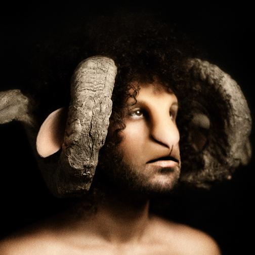 sheep SHEEPNATION portraits DAVIDELUCIANO