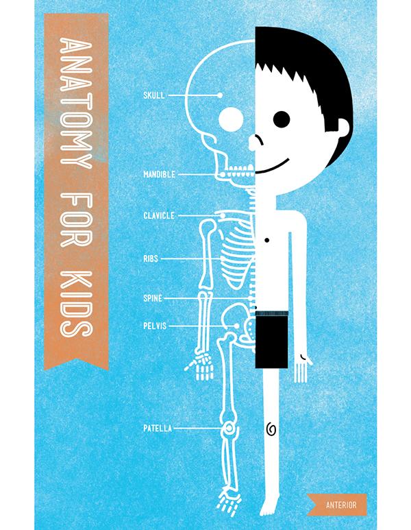 Anatomy For Kids On Behance