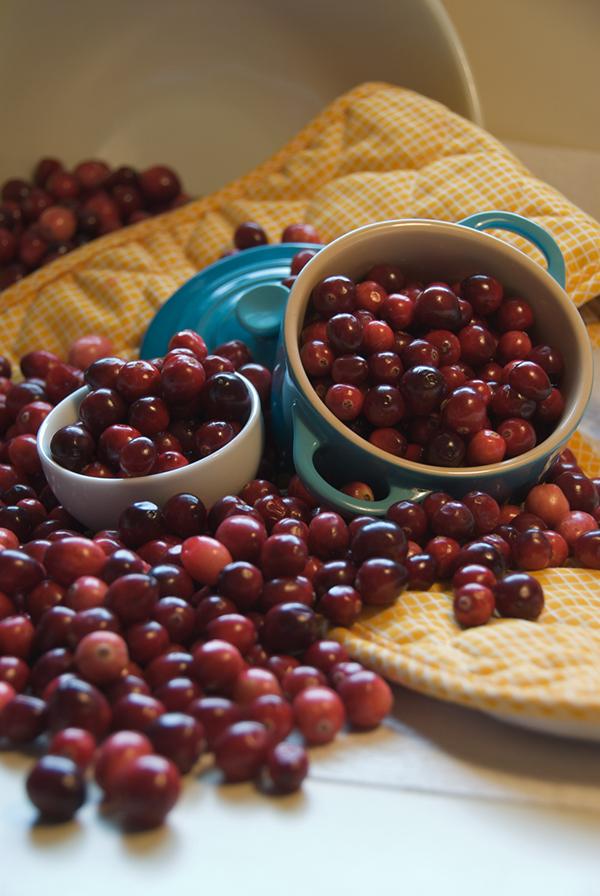 Food  food photography recipe