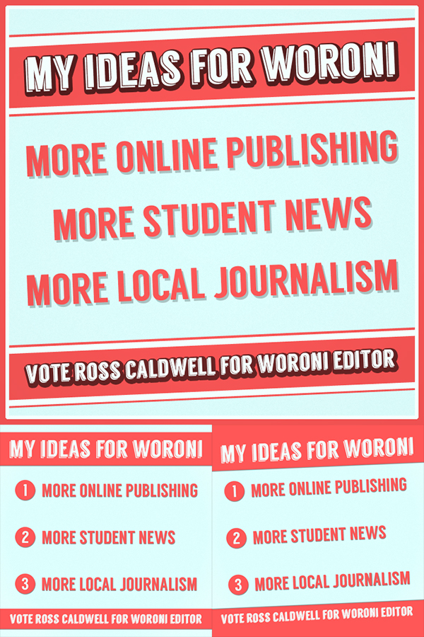 Election campaign graphic design Online Campaigning