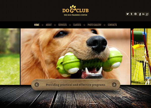 dog club the dog training center html5 template on behance