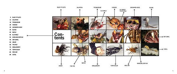creatures book creatures unknown creatures Haru Kaneko Haru McKeithen book design