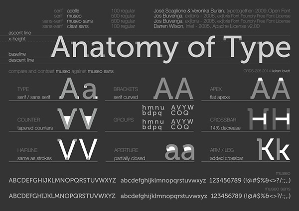 Anatomy Of Type Poster Design