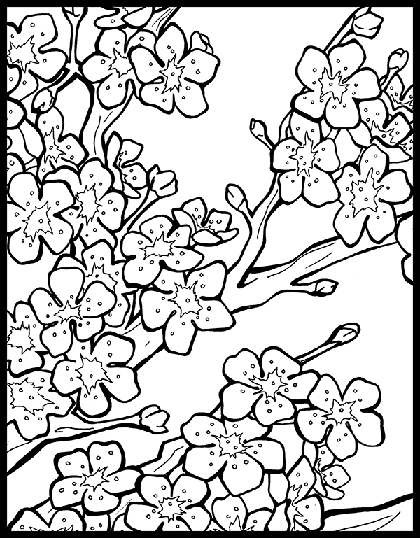 chinese lantern coloring page - chinese lantern festival coloring book