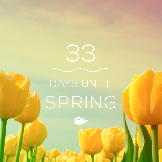 Spring Countdown on Behance