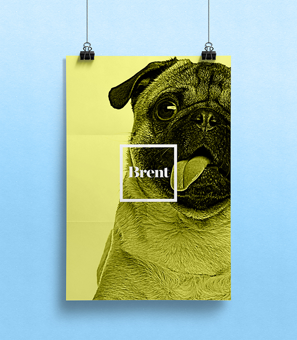 dogs and cats with people names poster series 2 on aiga member gallery