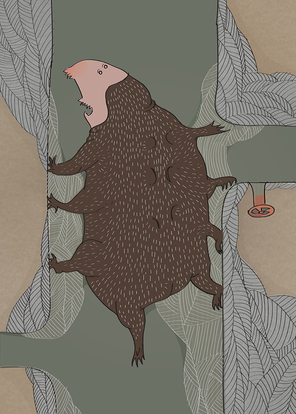 cartoon book illustration vector drawing vector graphic alicja wieczorek Julio Cortázar illustrations computer drawing