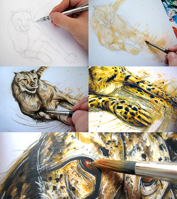 Chester Cheetah Illustrations On Behance: NIKE WILD On Inspiration Is