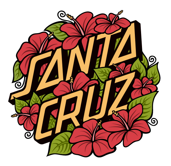 Santa Cruz Skateboard Collection Santa Cruz Skateboards