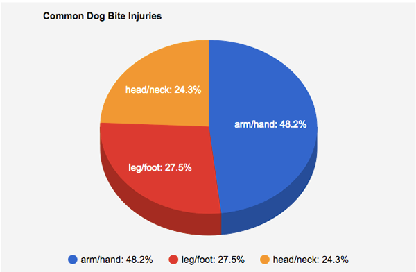 Pie Chart Of Common Dog Bite Injuries On Pantone Canvas Gallery