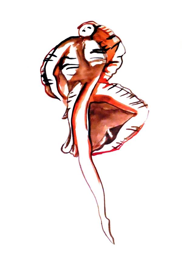 Shells DANCE   dancer snail snail shell dancing shells